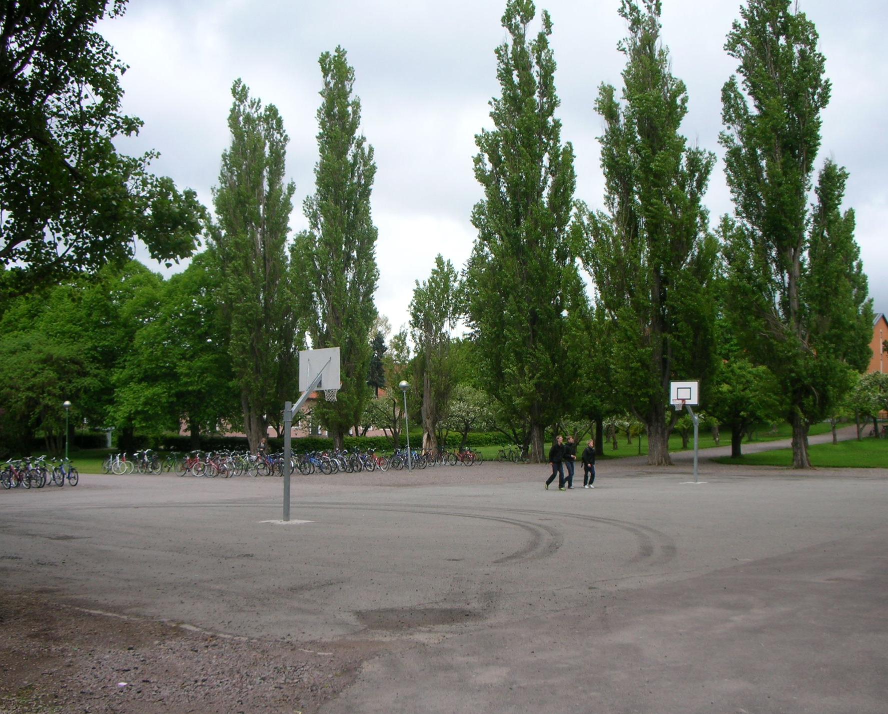 Skolgård